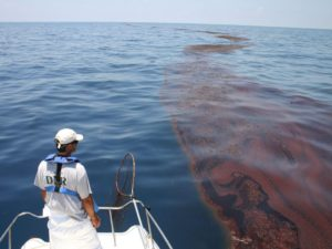 oil spill remediation sponge
